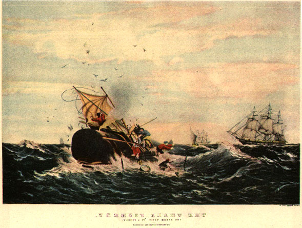 Classic print the sperm whale fishery